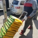 Paswo Food Distribution - Helping in Covid-19 Pandemic Album 4 (8)